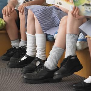Приказ минобрнауки о введении школьной формы