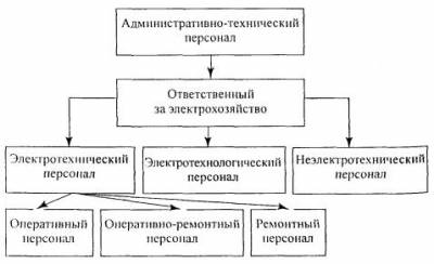 Должностная Инструкция Ответственного За Электрохозяйство Образец 2016 - фото 7